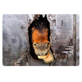 3D Crazy Horse Prints Welcome Entrance Doormat Rugs