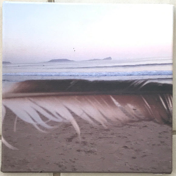 Worm's Head canvas print