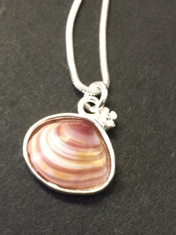 Silver real pink clam shell necklace