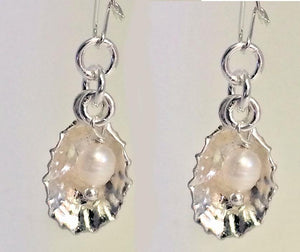 Limpet shell earrings
