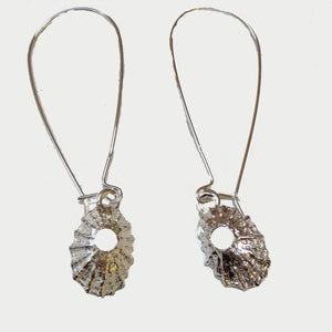 Silver limpet shell earrings by Pa-pa jewellery