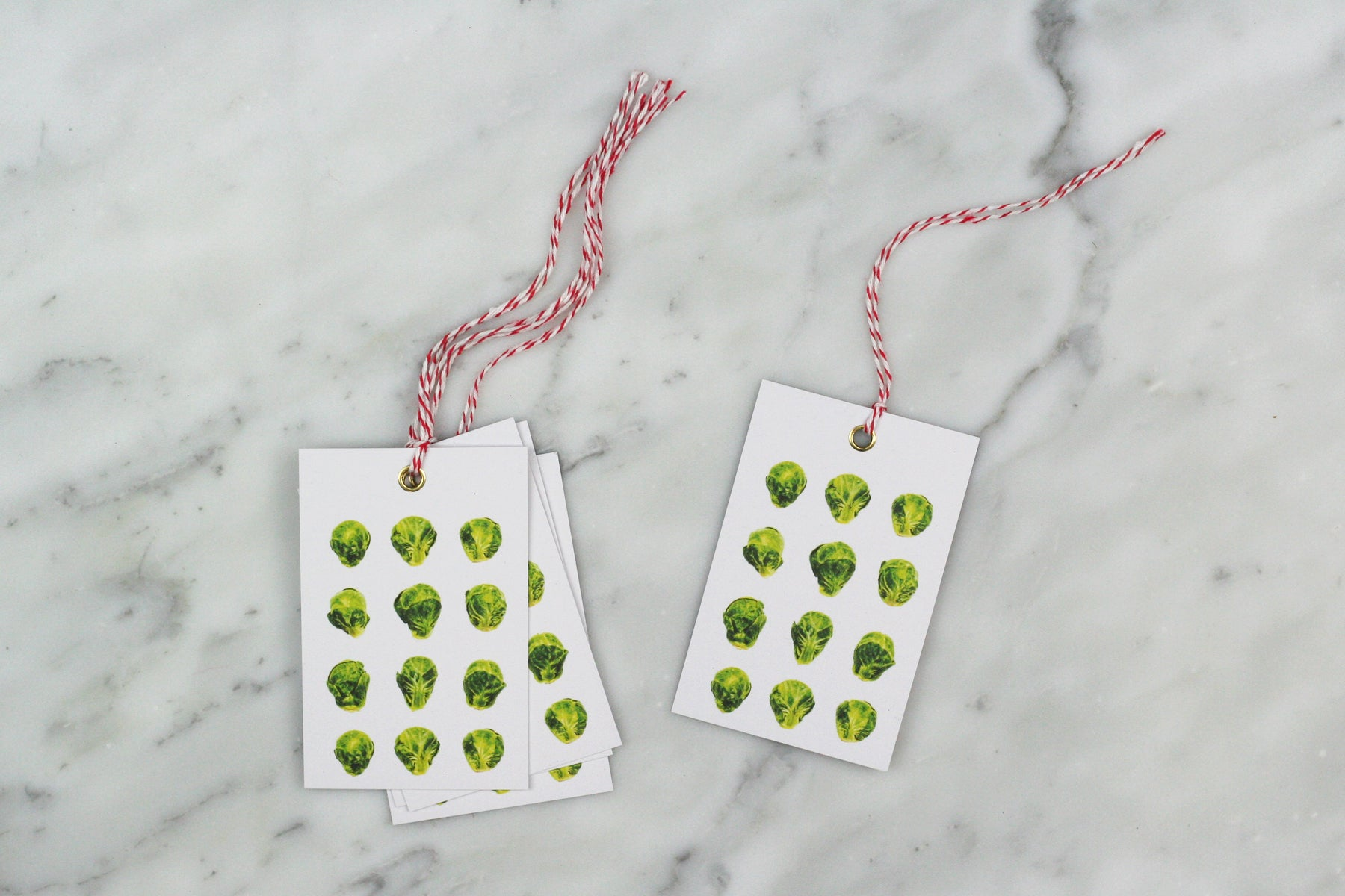 BRUSSELS SPROUT WRAPPING PAPER BUNDLE