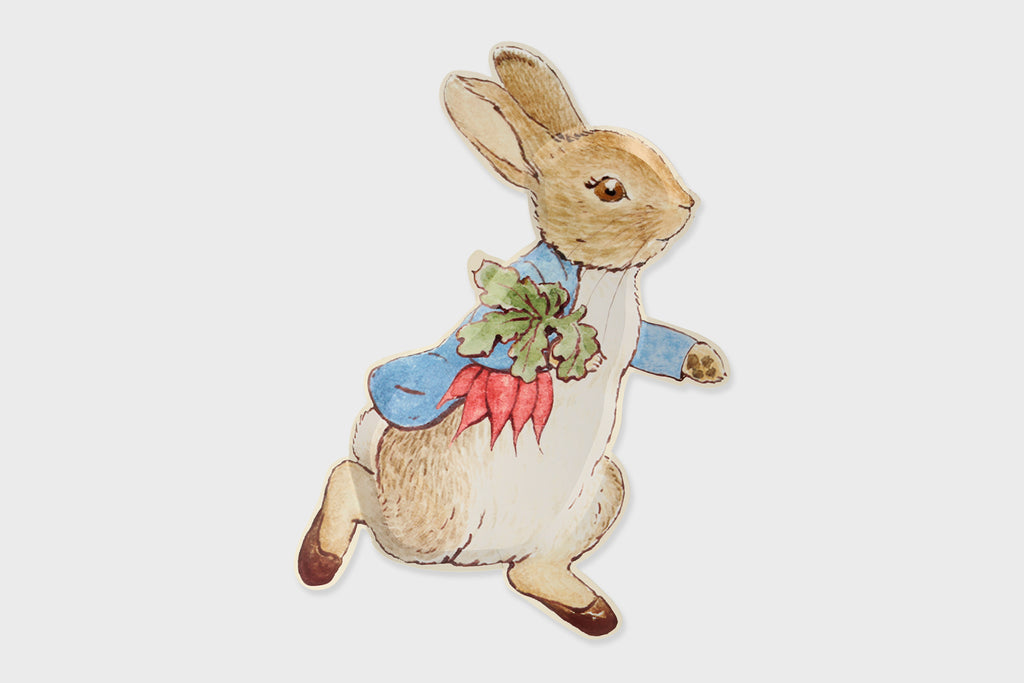 PETER RABBIT SHAPED PAPER PLATE