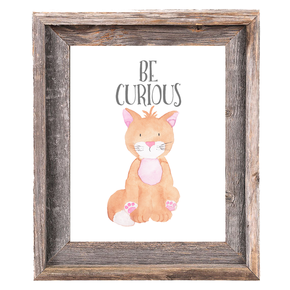 Provincial Collection - Cat Be Curious - Print