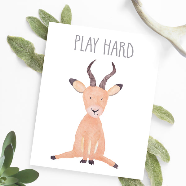 Safari Collection - Antelope Play Hard - Print