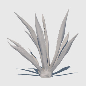 low resolution 3d render of an agave plant with clay applied