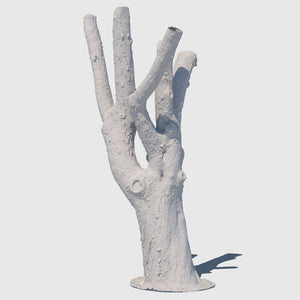 high resolution render of a clay model of a large leafless tree trunk