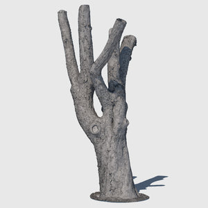 high resolution render of a wireframe model of a large leafless tree trunk