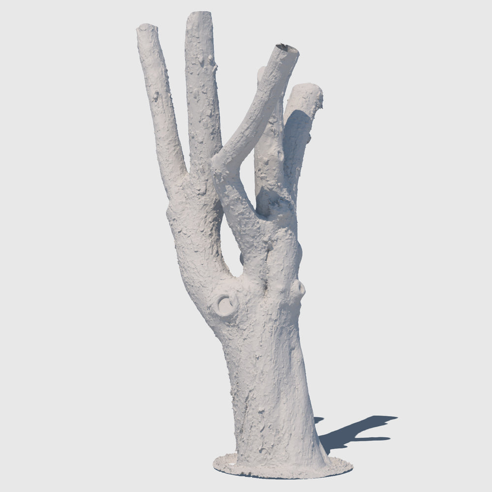 medium resolution render of a clay model of a large leafless tree trunk