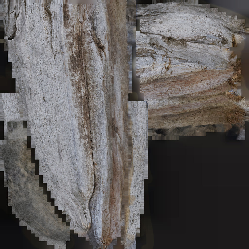 uv texture map of a 4-foot piece of driftwood