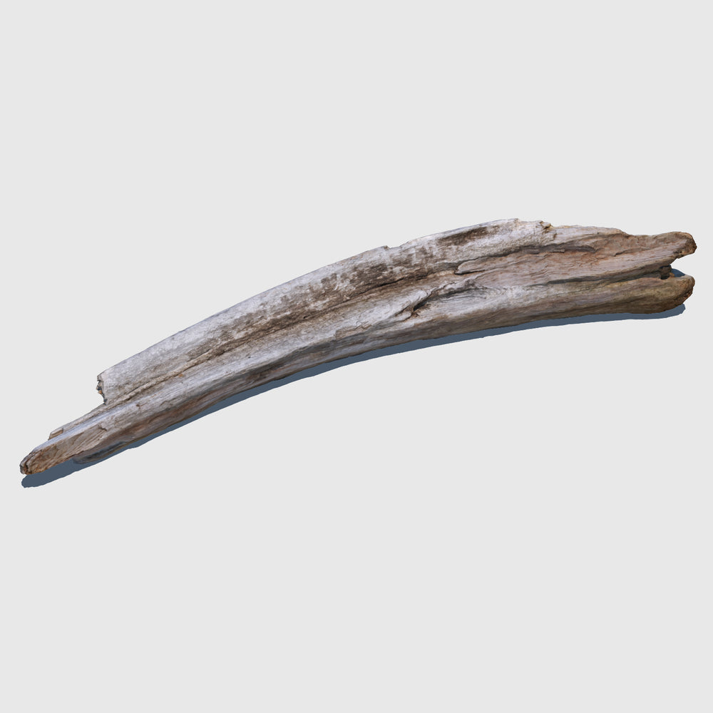 4-foot piece of cg beach driftwood with a slight bend on one side rendered in high resolution texture