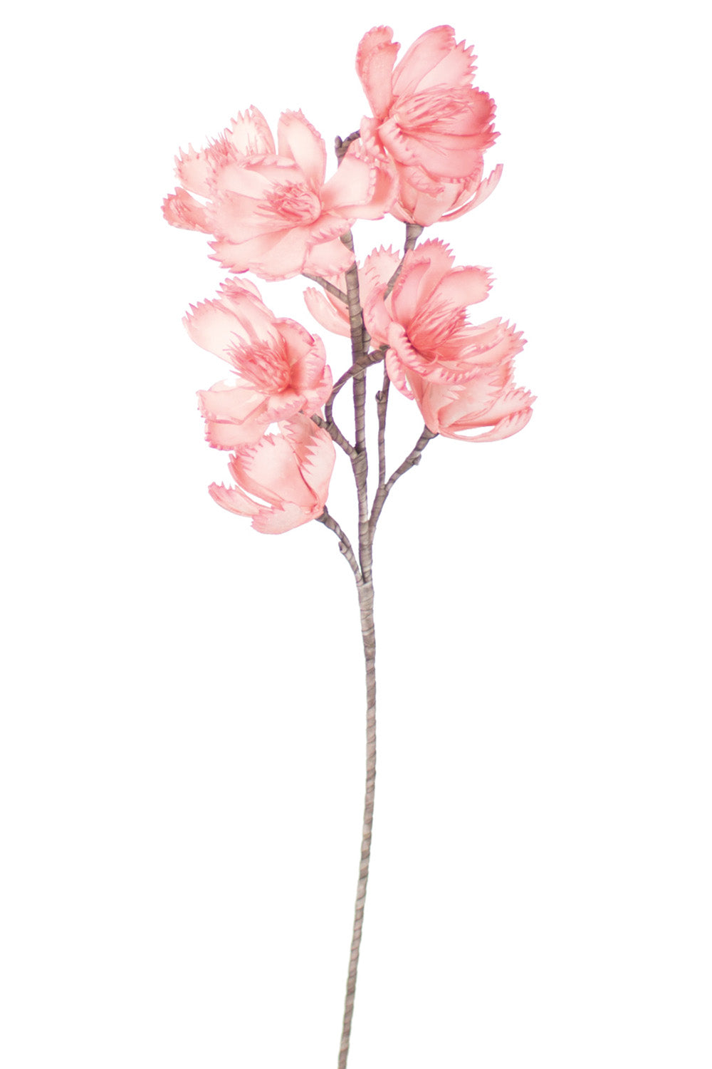 Botanical Pink Stem 874