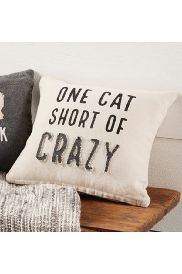 Crazy Cat Pillow