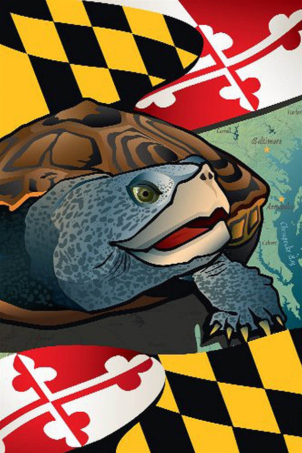 Large House Flag - Maryland Terrapin