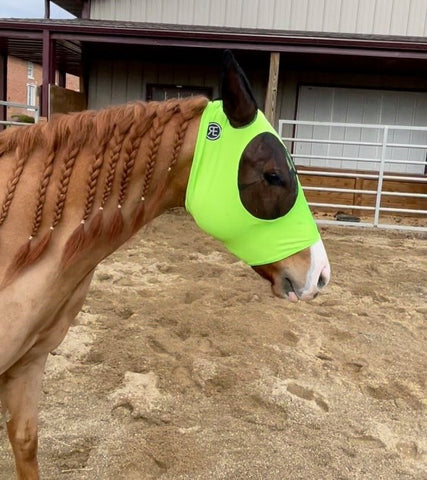 Lycra Fly Mask - Guardian Fly Protection by Reinsman - Bronco Western Supply Co.
