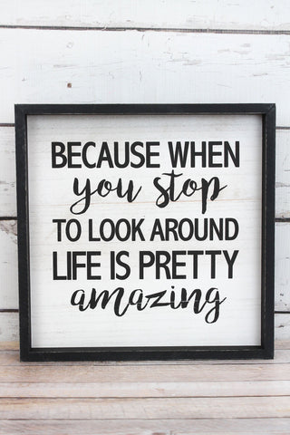 "'Life is Pretty Amazing"" Framed Wood Sign"