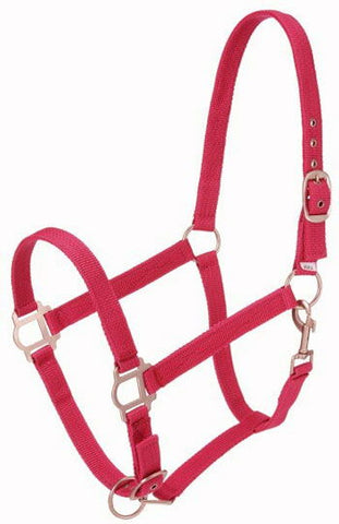 Pony Nylon Halter with Snap
