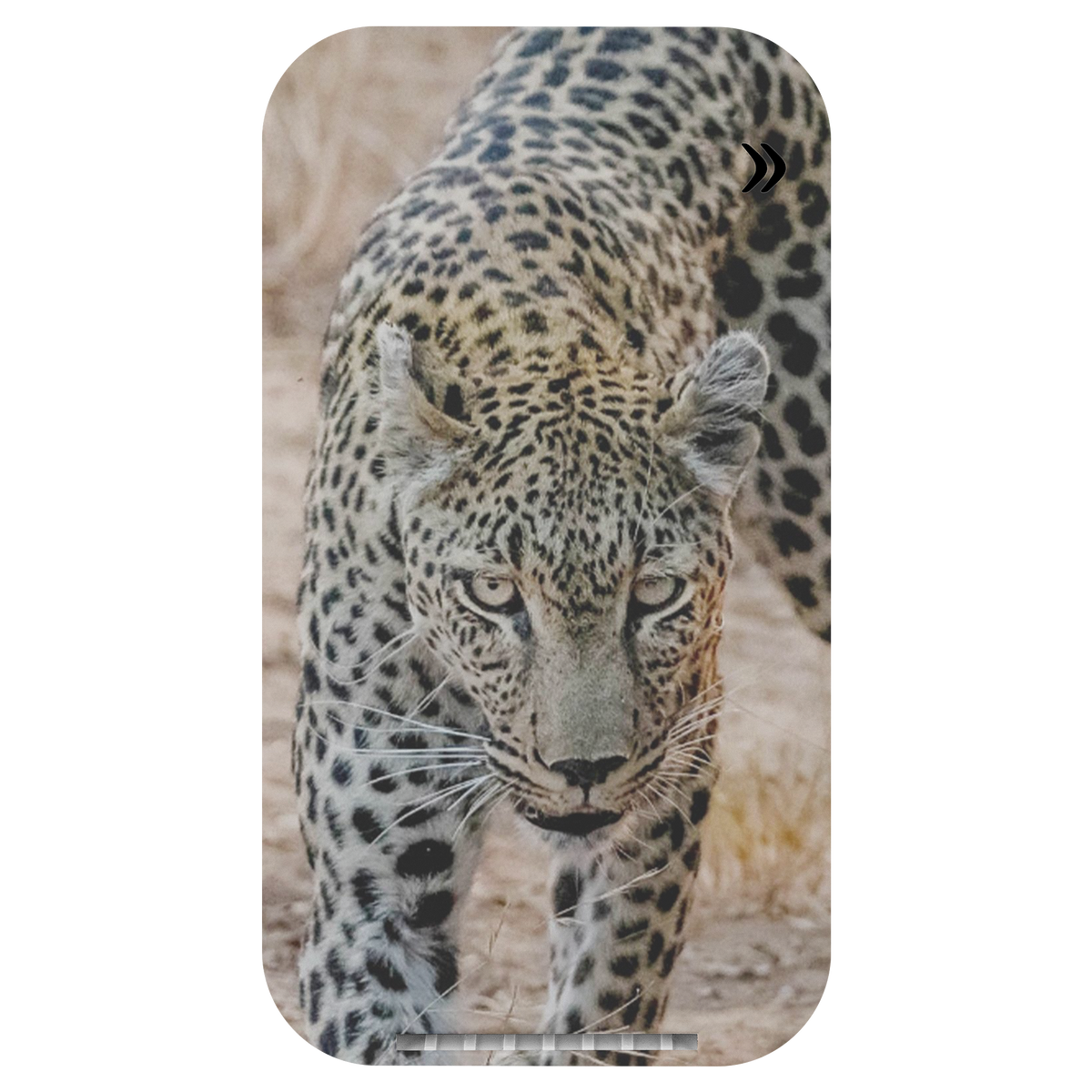 Exclusive Leopard Wireless Charging Stand