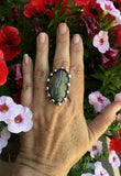 Royston Ribbon Turquoise Sterling Silver Ring
