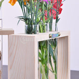 Flower Vase Test Tube Bottles in Wood Stand