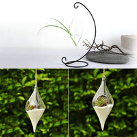 Double Tear Drop Hanging Hydroponic Friendly Terrarium - Go Steampunk