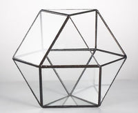Cuboctahedron Geometric Tabletop Glass Terrarium type one - Go Steampunk