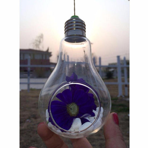Light Bulb Shaped Hanging Terrarium Go Steampunk
