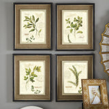 Vintage Green leaves aromatique watercolor style art prints