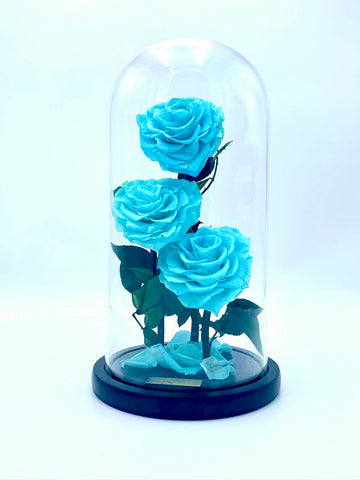 Eternity 3-in-1 Heart Rose in Enchanted Glass Dome