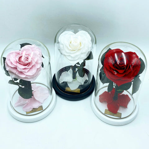 Medium Enchanted Glass Dome - Heart Rose