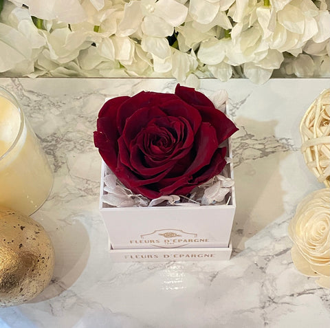 Sweet Deluxe Rose
