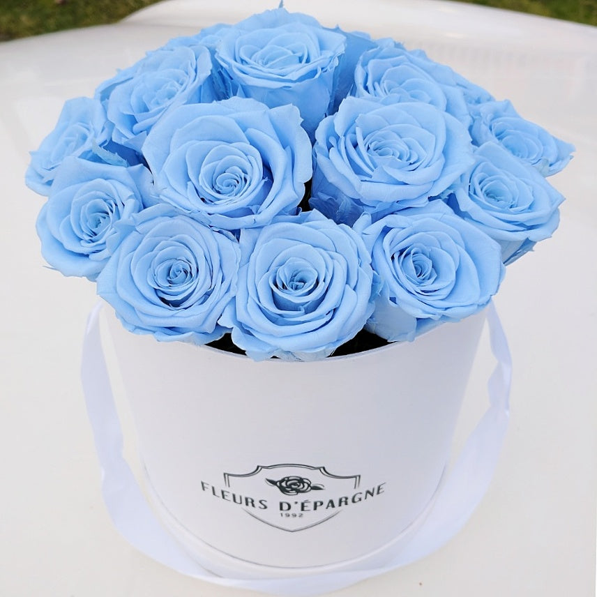 Blue Dream in Classic Rose Bucket