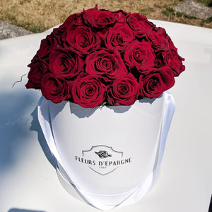 Super Dome in Classic Rose Bucket
