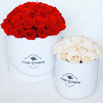 Superdome in Prestige Rose Bucket