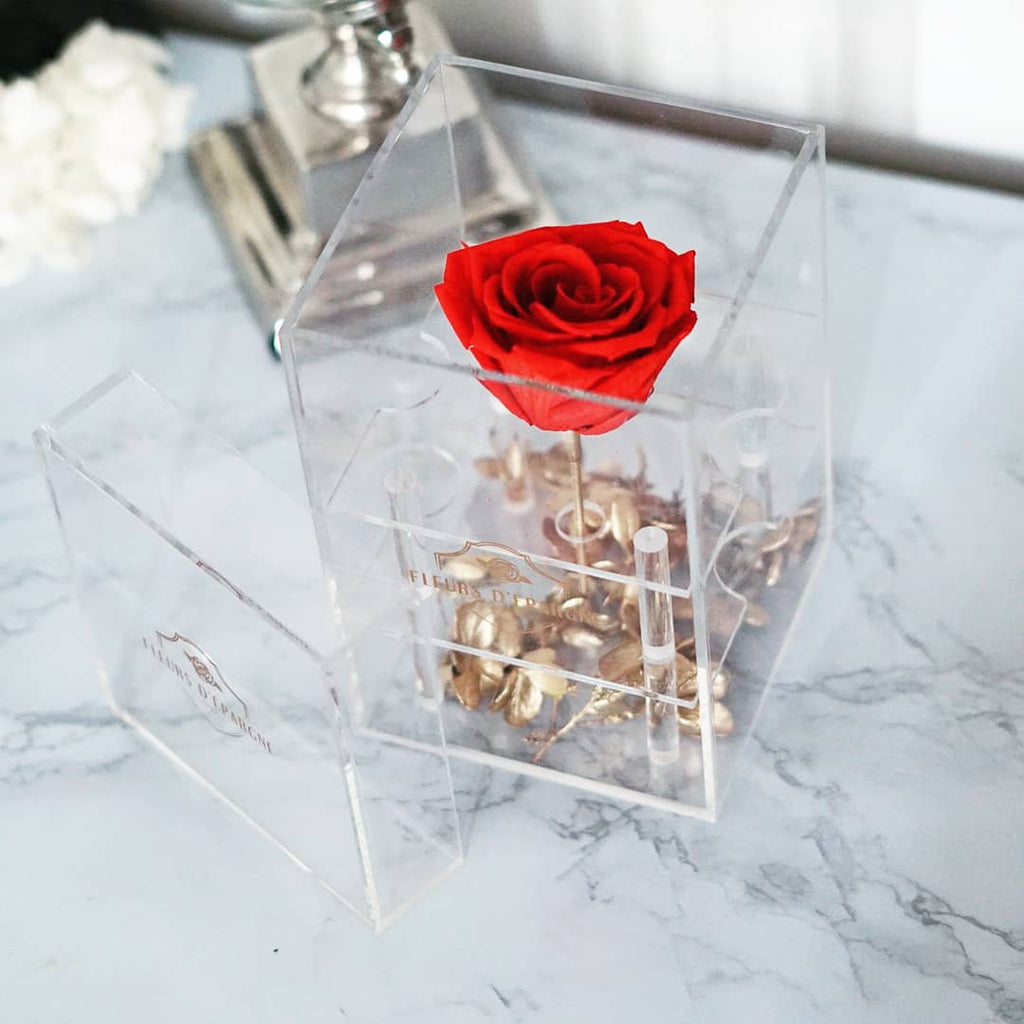 Endless Love in Purest Crystal Box