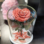 Enchanted Heart in Glass Dome