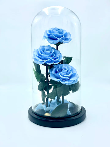 Eternity 3-in-1 Rose in Enchanted Glass Dome