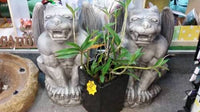 GARGOYLE MYTHICAL CREATURE Concrete Garden Statue ~ PICKUP ONLY - The Bowerbirds Nest of Treasures