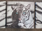 TIGER BLUE EYES SET OF 3 PRINT CANVAS WALL ART - The Bowerbirds Nest of Treasures
