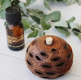 Banksia Aroma Pod Mini with Eucalyptus Oil Set - The Bowerbirds Nest of Treasures