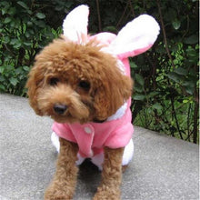 Dog in Pink Bunny Outfit from the Front | Animal Clothing | Present Pal