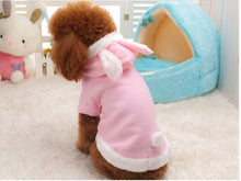 Dog in Pink Bunny Outfit from Behind | Animal Clothing | Present Pal