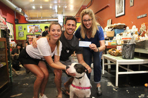 Dog rescue donation
