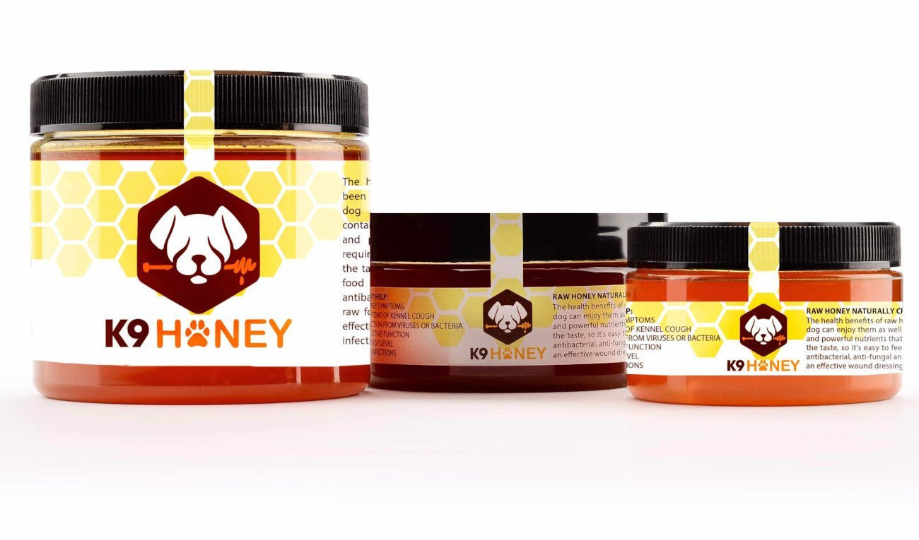 Best Raw Honey for Dogs