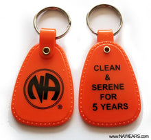 PKT- Orange 5 Yr Clean Tags