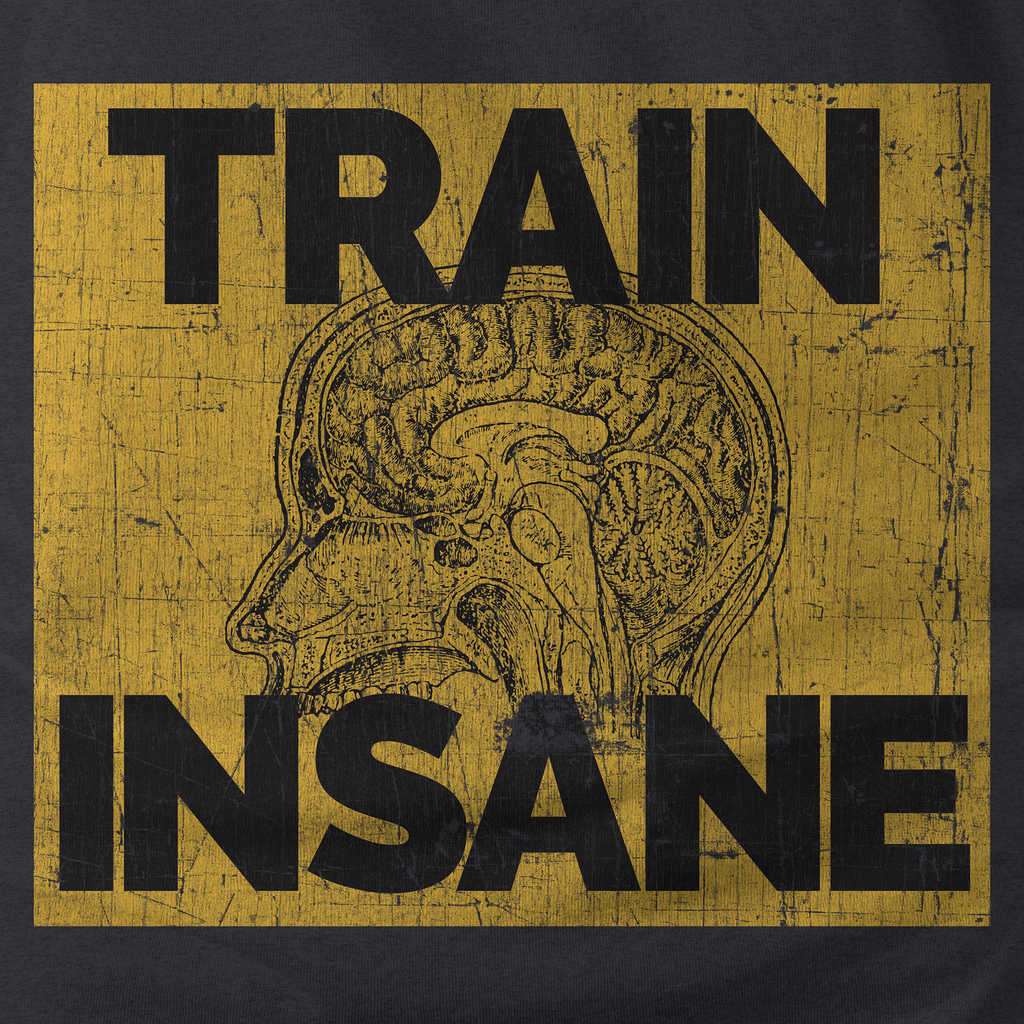 Train Insane Brain