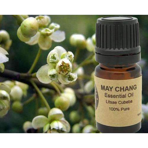 May Chang Essential Oil  5 Ml, 10 Ml Or 15 Ml: Aromatherapy- Shop MIXXCI