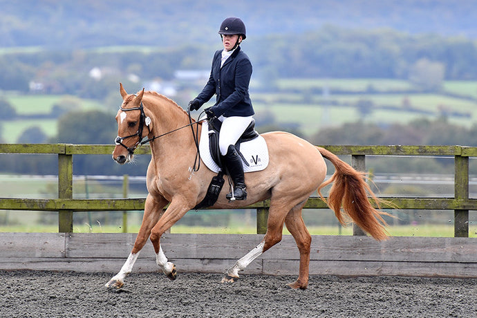 Odd behaviour? Is your horse suffering from severe muscle pain?