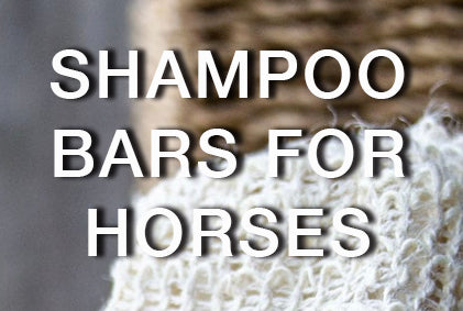 Why should I change to shampoo bars for my horse and where can I buy them?