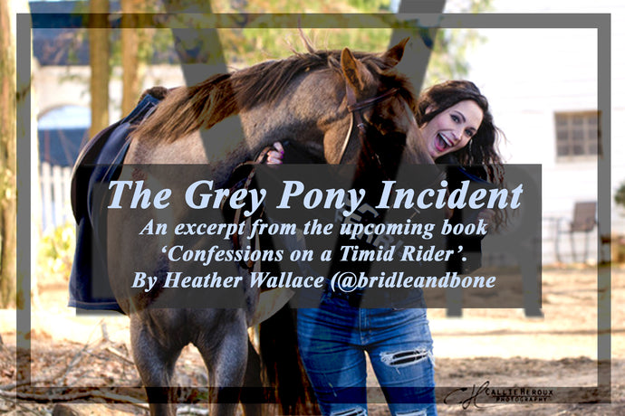 An excerpt from 'Confessions of a Timid Rider' by Heather Wallace, known for her award winning blog, Bridle & Bone.